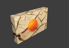 Naranja jugosa en fango agrietado Sunbaked Imagenes de archivo