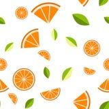 Naranja, limón en el fondo blanco Modelo inconsútil Ilustración del vector Fotografía de archivo