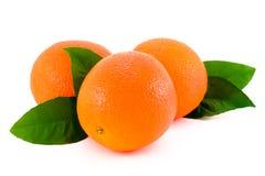 Naranja madura. Fotografía de archivo