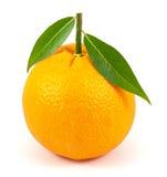 Naranja madura con las hojas en blanco Imágenes de archivo libres de regalías