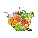 Naranja, pomelo, cal, jugo de limón y mitades de la fruta ilustración del vector