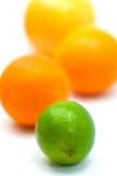 Naranja, pomelo y cal - aislados en el Ba blanco Fotos de archivo
