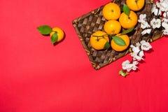 Naranja por Año Nuevo chino lunar Concepto del día de fiesta de Tet Foto de archivo