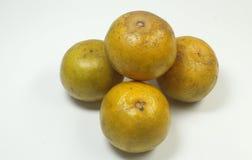 Naranja putrefacta Foto de archivo libre de regalías