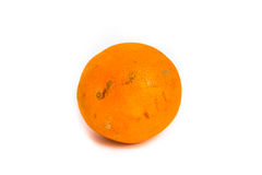 Naranja putrefacta aislada en blanco Imagen de archivo