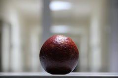 Naranja roja Imagen de archivo