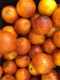 Naranja roja sangrienta Imagen de archivo