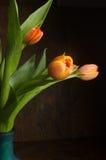 Naranja Tulipanes amarillos Fotografía de archivo libre de regalías