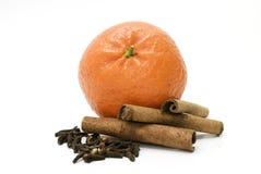 Naranja y condimentación Fotografía de archivo