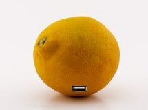 Naranja y evolución Foto de archivo libre de regalías