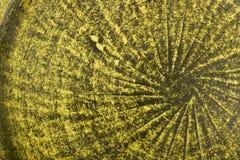 Naranja y fondo cocido verde de la loza de barro de la arcilla foto de archivo libre de regalías