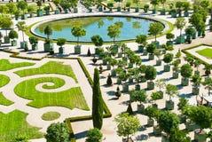 Naranjal en Versalles foto de archivo libre de regalías
