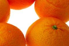 Naranjas foto de archivo libre de regalías
