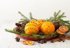 Naranjas adornadas con los clavos en ramas spruce con los conos Fotografía de archivo libre de regalías