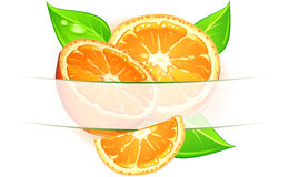 Naranjas con las hojas Fotografía de archivo libre de regalías