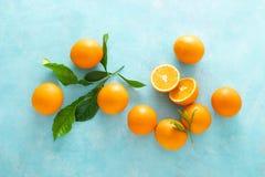 Naranjas con las hojas en fondo azul imagen de archivo libre de regalías