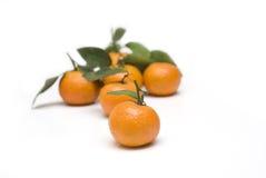 Naranjas con los fondos de las hojas Imágenes de archivo libres de regalías