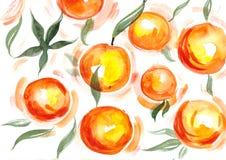 Naranjas de la acuarela Fotos de archivo libres de regalías