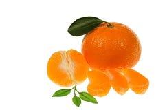 Naranjas de la mandarina con segmentos y hojas Foto de archivo