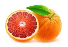 Naranjas de sangre aisladas Foto de archivo libre de regalías