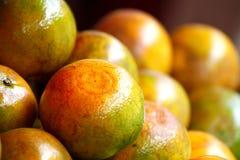 Naranjas del cultivo biológico Imagenes de archivo