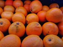 Naranjas en el grupo de modelos Foto de archivo libre de regalías