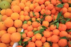 Naranjas en el mercado de la comida para el fondo, montañas Mala de Cameron Fotos de archivo libres de regalías