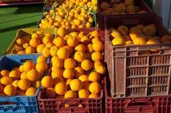 Naranjas en envases de plástico imagenes de archivo