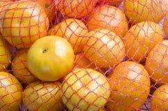 Naranjas en red Fotografía de archivo libre de regalías