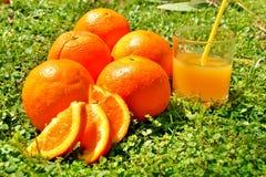 Naranjas en un grupo en hierba Foto de archivo libre de regalías