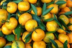 Naranjas frescas Imágenes de archivo libres de regalías