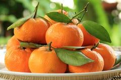 Naranjas frescas Fotografía de archivo libre de regalías