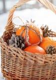 Naranjas frescas con un arco de conos del cordón y del pino Imagen de archivo