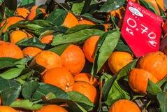 Naranjas frescas para la venta en mercado famoso de los granjeros en Sineu, Majorca Fotos de archivo libres de regalías