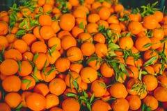 Naranjas jugosas frescas imágenes de archivo libres de regalías