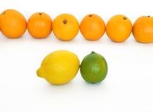 Naranjas, limón y cal Fotografía de archivo libre de regalías