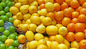 Naranjas, limones y cales Imagen de archivo