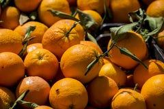 Naranjas listas para vender en el mercado. Una caja llena de naranjas en un mercado. Las naranjas son muy ricas en vitamina c Stock Photo
