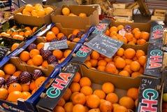 Naranjas para la venta Marche Fotografía de archivo libre de regalías