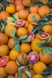 Naranjas recientemente escogidas Fotografía de archivo