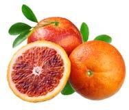 Naranjas rojas sicilianas Fotos de archivo libres de regalías