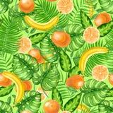Naranjas y hojas tropicales ilustración del vector