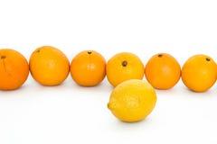 Naranjas y limón Foto de archivo libre de regalías