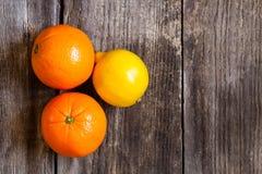 Naranjas y limón Foto de archivo