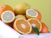 Naranjas y limones Imagen de archivo libre de regalías