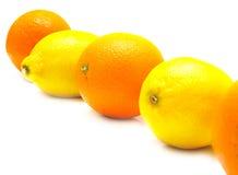 Naranjas y limones Fotos de archivo libres de regalías