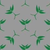 Narastające zielone rośliny, bezszwowy wzór Obraz Stock