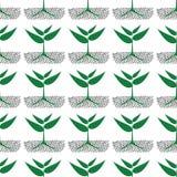 Narastające zielone rośliny w ziemi, ilustracja Fotografia Stock