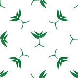 Narastające zielone rośliny, wzór Zdjęcia Stock