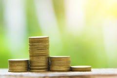 Narastający Biznesowy przyrost i Pieniężna kultywacja rośliny od monet w Szklanych butelkach na Zielonym tle zdjęcie stock